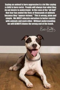 Breed discrimination is wrong!
