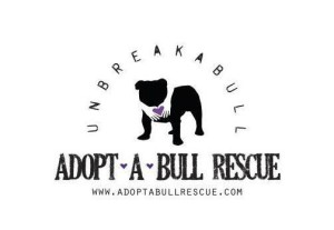 A Dog Rescue Organization