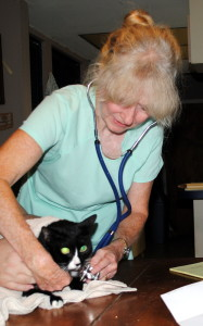 Iris, the cat, with Dr. Juday